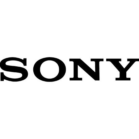 Controlla i prezzi dei tuoi concorrenti su prodotti Sony