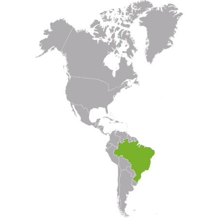 Controlla i prezzi dei tuoi concorrenti in Brasile