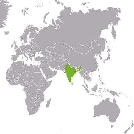 Controlla i prezzi dei tuoi concorrenti in India